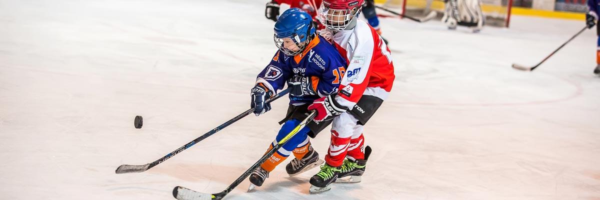 Hokejové třídy